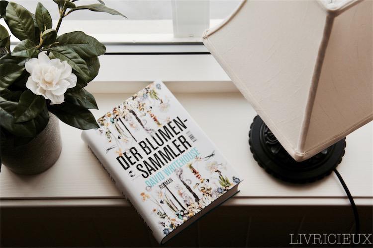 Der_Blumensammler_2