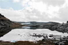 Sognefjell_2